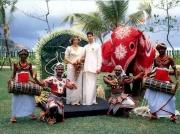 Шри- Ланка. Туры на Шри-Ланку купить во Владимире