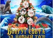 Новогодняя сказка в Москвариуме. Автобусный тур из Владимира.